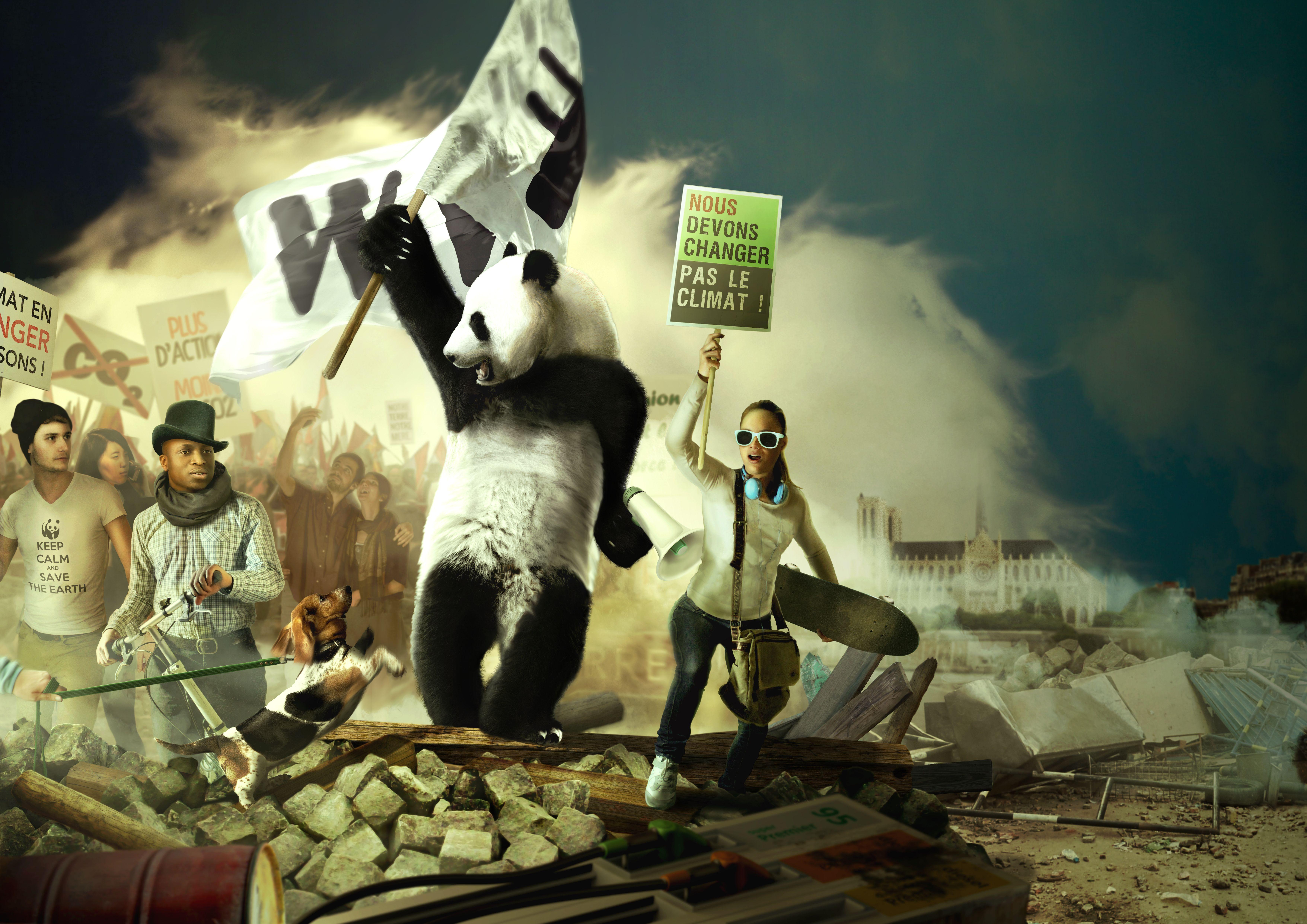 Revolution WWF